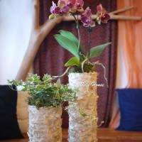 2居家花藝設計-2