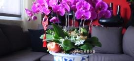 2017春節花禮預購中・高雄花店綺麗屋花藝設計