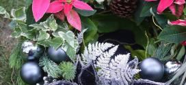 森の系組合盆栽聖誕花圈課程|2017年12月綺麗屋花藝
