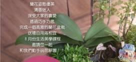蘭花盆栽課程生活花藝美學08.21|高雄花店綺麗屋專業教室