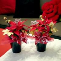 聖誕節盆花(2盆)【HA011】