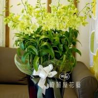 藝術型蘭花盆栽【CA068】