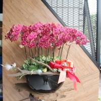 藝術型蘭花盆栽【CA078】