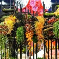 2018台中花博花卉裝置藝術設計展-虛實之間|高雄綺麗屋專業花藝設計11