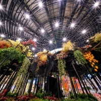 2018台中花博花卉裝置藝術設計展-虛實之間|高雄綺麗屋專業花藝設計5
