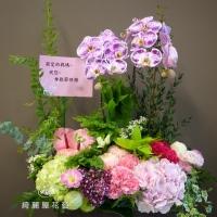 母親節康乃馨與蘭花花禮【EA097】