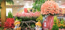 【鶴彩‧高雄】高雄捷運站花卉佈置 |綺麗屋專業花藝會場布置
